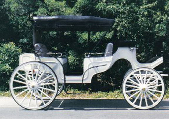 Horse Drawn Wagon Horse Drawn Vis a Vis Carriage