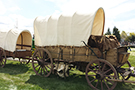 Horse Drawn Chuck Wagon with Pup