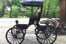Horse Drawn Doctor's Buggy