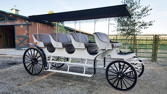 New Carriage Seat ~ Horse drawn vehicles wagons sleighs