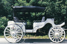 Horse Drawn Vis-A-Vis Carriage