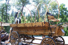 Horse Drawn Wagonette/Wooden Wheel Gear